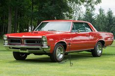 1966 Pontiac GTO Gallery American muscle cars are commonplace in the particular automobile promote for 1965 Gto, 1965 Pontiac Gto, Pontiac Cars, Chevrolet Camaro, Custom Muscle Cars, Best Muscle Cars, American Muscle Cars, Muscle Mass, Gto Car