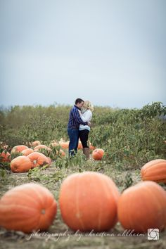©Christina Ahlheim | Charisma Photography | Fall Engagement | Pumpkin Patch Engagement | Faust Park | Chesterfield, Missouri Engagement Photographer Pumpkin Maternity Photos, Fall Maternity Photos, Maternity Pictures, Pregnancy Photos, Maternity Poses, Autumn Photography, Couple Photography, Engagement Photography, Photography Ideas