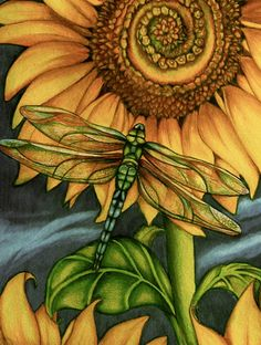 more dragonfly art....with sunflower