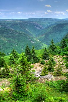 Cape Breton Highlands, National Park, Nova Scotia - We saw this in the Fall, very beautiful.