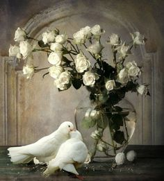 Love Birds and roses