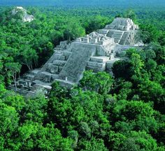 Calakmul (also Kalakmul and other less frequent variants) is also the name given to site of one of the largest ancient Maya cities ever uncovered. It is located in the 1,800,000 acre Calakmul Biosphere Reserve, deep in the jungles of the Peten, 30 km from the Guatemalan border.    First discovered from the air by biologist Cyrus L. Lundell of the Mexican Exploitation Chicle Company on December 29, 1931, the find was reported to Sylvanus G. Morley of the Carnegie Institute at Chichen Itza in…