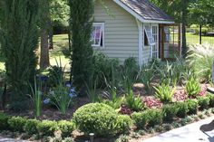 Line beds with baby gem boxwoods & mondo grass. (Beds by my pool)  My House, My Garden: my home