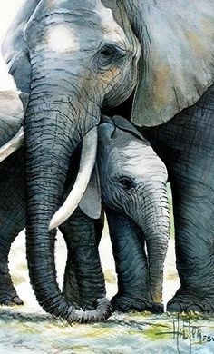 Elephant and Baby by Phil Hilton's Watercolors. Absolute perfection and very heartwarming.