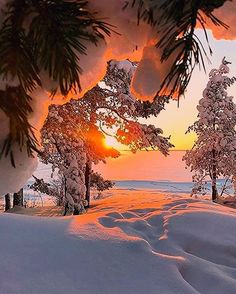Christmas Scents 2019 Tub And Body Works What are the hottest Christmas items of Grasp some li Winter Sunset, Winter Love, Winter Scenery, Winter Wonder, Autumn Scenes, Snow Scenes, Winter Pictures, Nature Pictures, Beautiful Landscapes