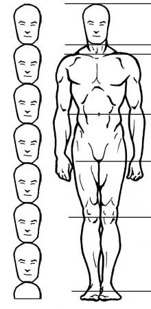 How to draw the human figure - Drawing Male Proportions