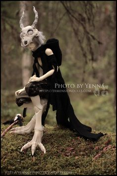 Bone Dragon by yenna-photo on deviantART
