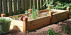 Raised Planter Bed, plus how to's for construction, materials, and layout.