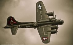 antique military plane-warbird