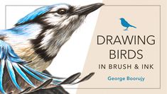 Let your drawing skills soar! Learn all the skills to illustrate beautiful birds with lifetime access to online lessons. Watch anytime, anywhere! - via @Craftsy