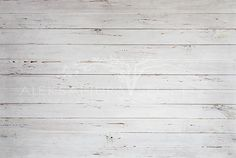 Photography Digital Backdrop Floordrop digital design Boards