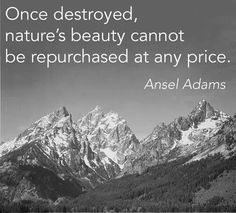 Ansel Adams. Love of nature.   Keep America beautiful and healthy.