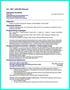 computer programmer resume has some paragraphs that focuses on the project management object oriented programming - Computer Programmer Resume