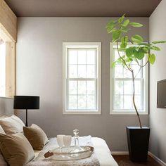 壁紙 のり付 クロス 生のり付き壁紙 シンコールbigace<br>寝室・個室<ナチュラル> BA5559・5245・5566・5246・5595・5247