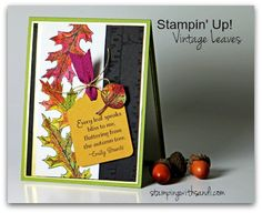 Stampin Up Vintage Leaves card by Sandi @ www.stampinwithsandi.com