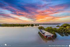 Hara Protected Sea Forest, Qeshm Island, Persian Gulf, Iran (Persian: جنگل حرا - قشم ) Photo by: Zahra Ahmadi