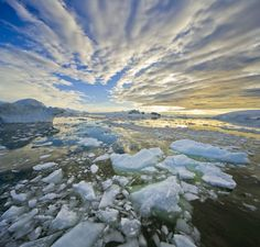 Glaciers-under-treat-Berg-019.jpg 408×390 pixels