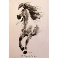 Black and White Art Horse drawing original pencil art Andalusian... ($35) ❤ liked on Polyvore