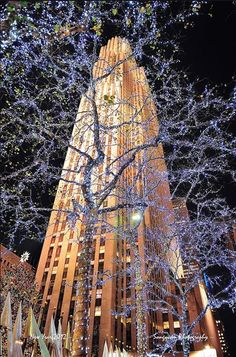 Christmas at Rockefeller Center New York Noel, I Love Nyc, City Lights, Voyage Usa, New York City Christmas, Christmas Time, Christmas Books, Christmas Lights, Destination De Reve