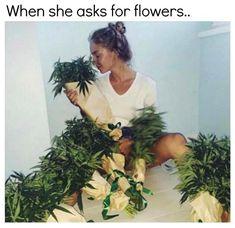 My Flower, Flowers, Smoking Weed, Medical Marijuana, Cannabis, Christmas Wreaths, Herbs, Sayings, Ganja