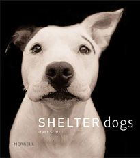 Traer Scott is an amazing photographer, and she did a great thing for al shelter dogs with this beautiful book. .50 cents of all copies sold go to the ASPCA.