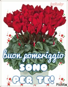Buon pomeriggio a te – Pagina 3 Joelle, Good Afternoon, Christmas Wreaths, The Originals, Holiday Decor, Wisdom Quotes, Messages, Pictures, Brainy Quotes