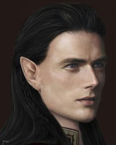 Fëanor by rennavedh_