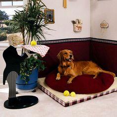 Doggie Corner