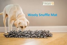 Enter to #win a PAW5