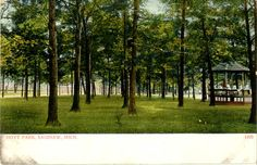 Hoyt Park in Saginaw, Michigan (postcard from 1970)