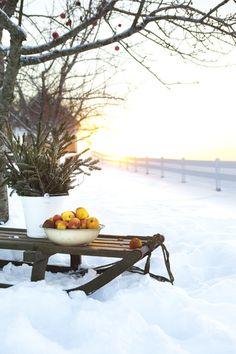 Hildas hem: En vinterbuffé med äpplen till djuren