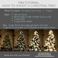 how to shoot christmas tree lights tutorial