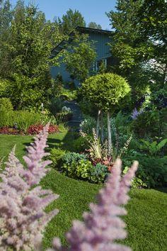 Mikä ihana puutarha! Jokisten piha tulvii kukkia keväästä syksyyn   Kodin Kuvalehti