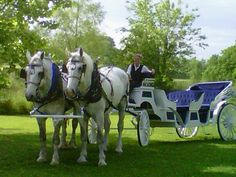 Carriage Ride in Pike County, Illinois.  Check us out at Harpole's Heartland Lodge