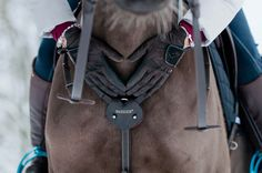 Winter horse Just love equestrian photo by Sweetieisafruit