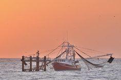 http://fineartamerica.com/featured/shrimp-boat-tied-off-at-sea-bradford-martin.html