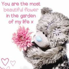 Tatty Teddy, Teddy Bear Quotes, Teddy Bear Pictures, Bear Pics, Blue Nose Friends, Valentine Images, Bear Card, Cute Love Pictures, Most Beautiful Flowers