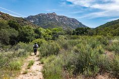 Hauser Canyon Trail