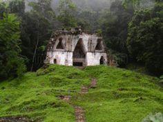 Selva Lacandona, Chiapas