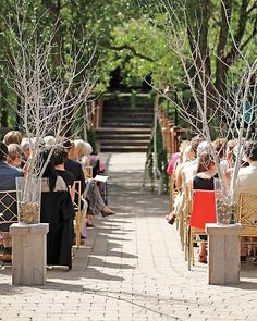 Love the bare birch branches they have used to greet the entrance to the aisle