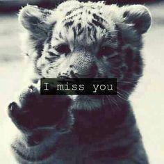 Come back me