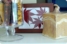 Dried Maple Leaves in Frame