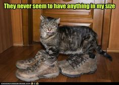 .They never seem to have my size...