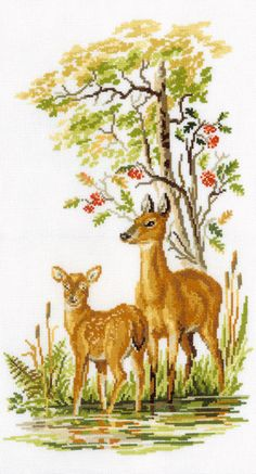 COUNTED CROSS STITCH KIT DEER WITH DEER    PRODUCT DETAILS:  Size: 8.46 x 15.74…