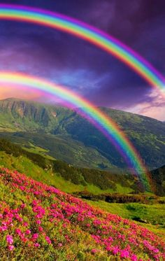 DOUBLE RAINBOWS  Parallel rainbows are formed when the light refracted through raindrops is coming from the same wind direction with the colors reversed.  double rainbows, flowers mountain, mountains, sky, light cloud
