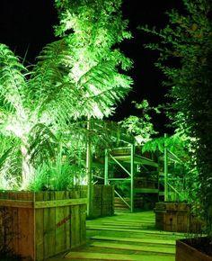 Antoine Ruellan et Yves Philippot, lauréats du festival international des jardins de Chaumont-sur-Loire créent : « Collectionneurs de l'ombre » - Tugdual Ruellan - Information, journalisme et communication