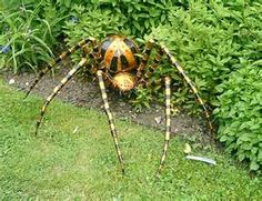 this is where I like my spiders, this one bites BTW!