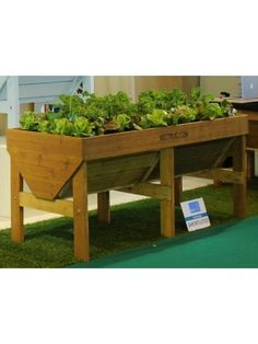 GIY Ireland - Together We Grow!  Raised Veg Planter