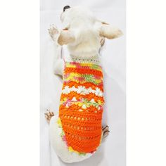 Cute Dog Clothes Colorful Orange Pet Clothing Handmade by myknitt