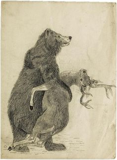 Bear clasping a deer (pencil and wax crayon) by Beatrix Potter